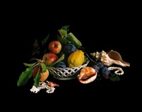 from the series flowers, fruits & portraits: [stilleben-26-2008] by shirana shahbazi